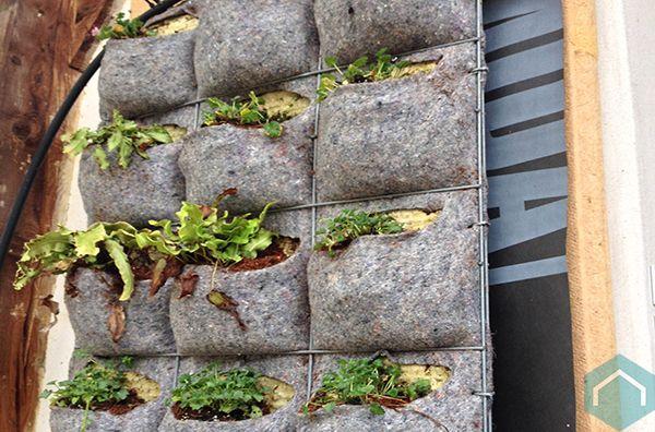 Verticale Tuin Systeem : Verticale tuin maken binnen planten aan muur full size posters met